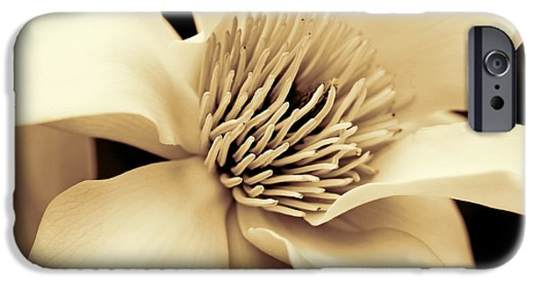 Monotone iPhone Cases - Magnolia Flower in Sepia Four iPhone Case by Jennie Marie Schell