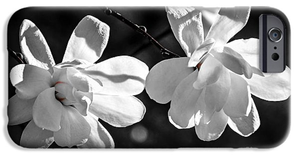 Magnolia iPhone Cases - Magnolia flowers iPhone Case by Elena Elisseeva