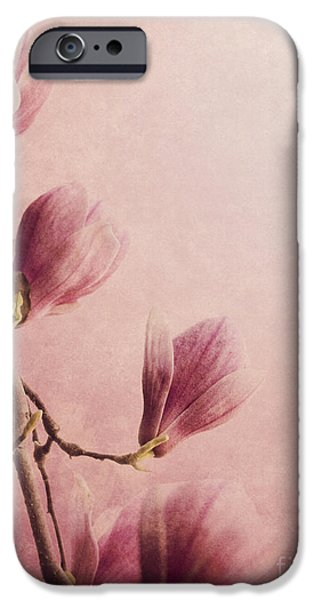 Magnolia iPhone Cases - Magnolia iPhone Case by Jelena Jovanovic