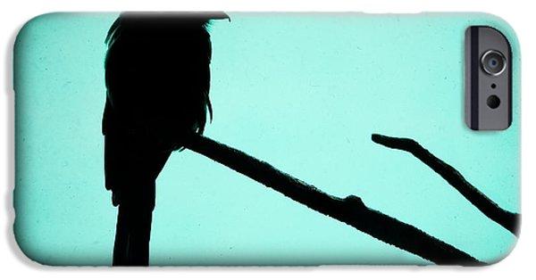 Gary Heller iPhone Cases - Magpie Shrike Silhouette iPhone Case by Gary Heller