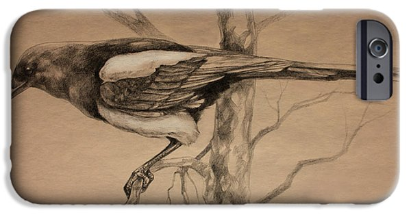 Magpies iPhone Cases - Magpie sketch iPhone Case by Derrick Higgins