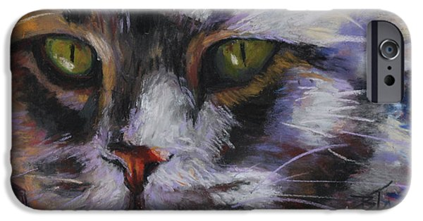 Close Pastels iPhone Cases - Main Coon iPhone Case by Billie Colson