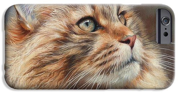 Maine iPhone Cases - Maine Coon Cat iPhone Case by David Stribbling