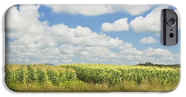 Maine Farms iPhone Cases - Maine Corn Field In Summer Photo Print iPhone Case by Keith Webber Jr
