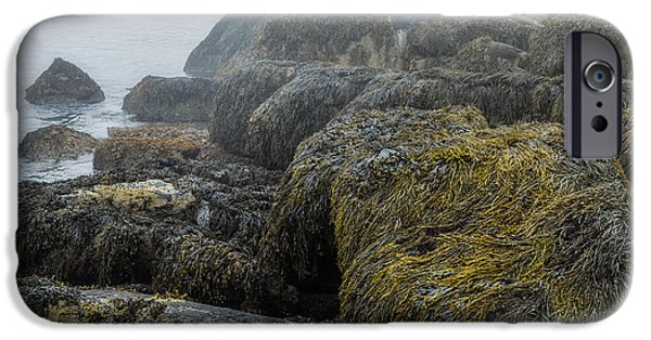 Maine iPhone Cases - Maines Rocky Coast iPhone Case by Joseph Smith