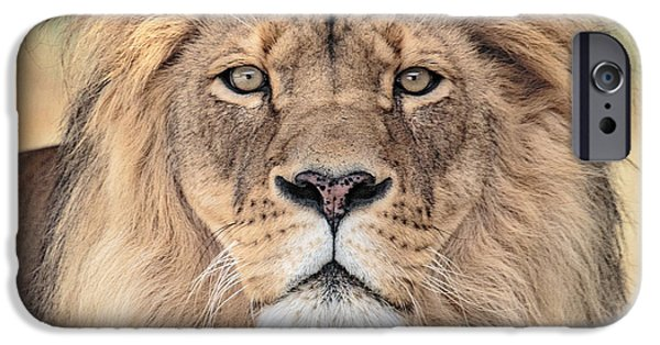 Zoo iPhone Cases - Majestic King iPhone Case by Everet Regal