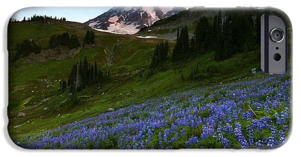 Meadow Photographs iPhone Cases - Majestic Meadow iPhone Case by Mike Dawson