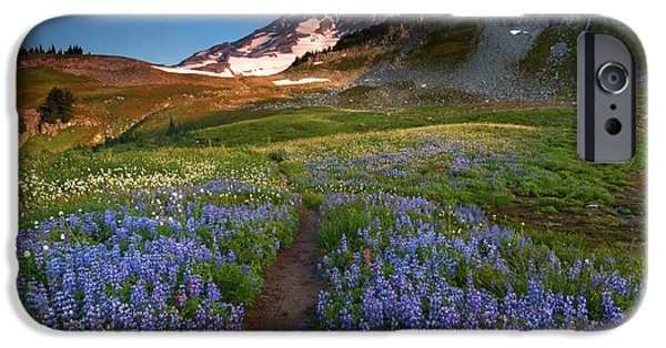 Meadow Photographs iPhone Cases - Majestic Trail iPhone Case by Mike Dawson