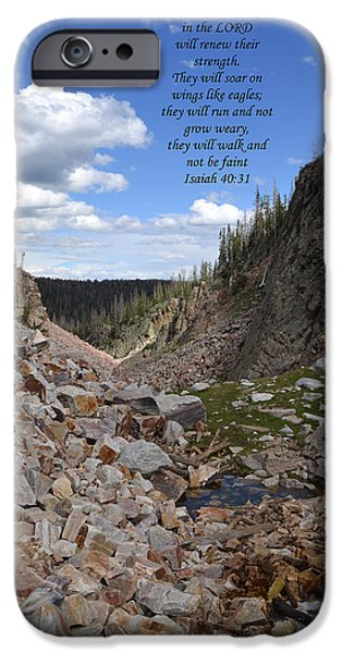 Majestic View iPhone Case by Kathy Junkins