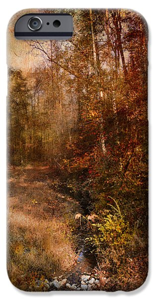 Autumn Scenes Photographs iPhone Cases - Make A Wish iPhone Case by Jai Johnson