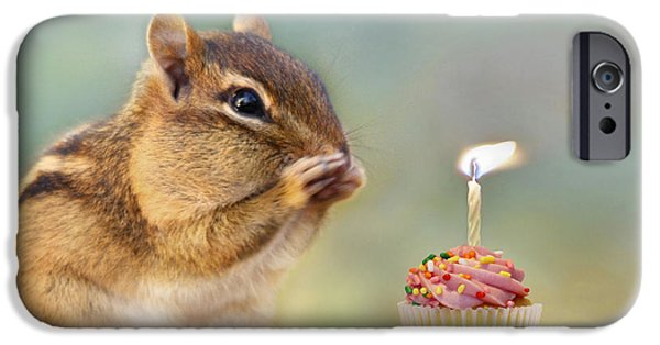 Animal Cards iPhone Cases - Make a Wish iPhone Case by Lori Deiter