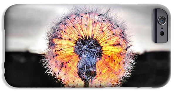 Selective Coloring Art iPhone Cases - Make a Wish  iPhone Case by Marianna Mills