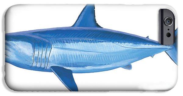 Nantucket iPhone Cases - Mako Shark iPhone Case by Carey Chen