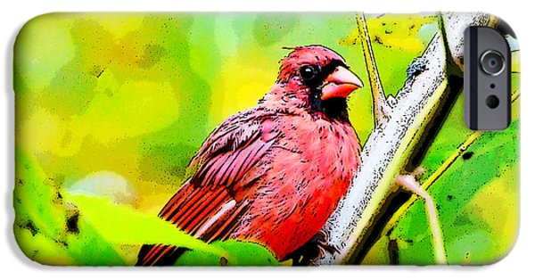 Cardinal iPhone Cases - Male Cardinal - Artsy  iPhone Case by Kerri Farley