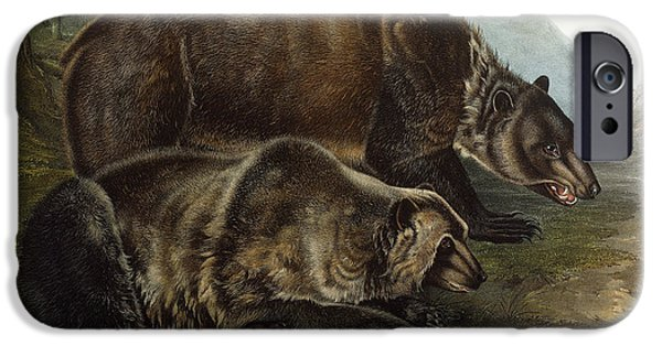 Hunting Drawings iPhone Cases - Male Grizzly Bear iPhone Case by Audubon