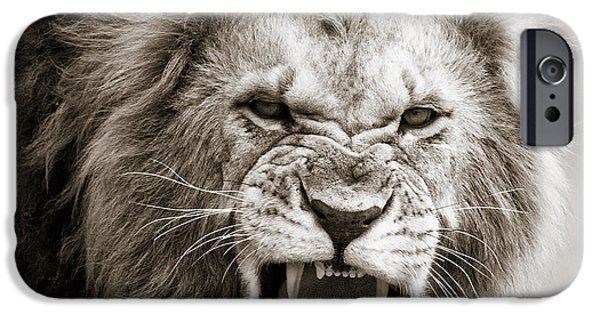 Kenya Photographs iPhone Cases - Male Lion I Masai Mara Kenya iPhone Case by Regina Mueller