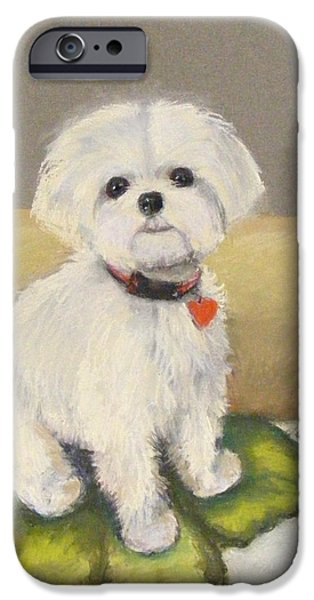 Small Pastels iPhone Cases - Maltese Jeeter iPhone Case by Lenore Gaudet