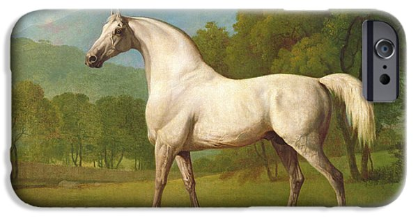 Race Horse iPhone Cases - Mambrino, C.1790 iPhone Case by George Stubbs