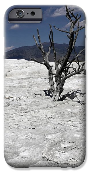 Mammoth Terrace iPhone Cases - Mammoth terrace iPhone Case by Sophie Vigneault