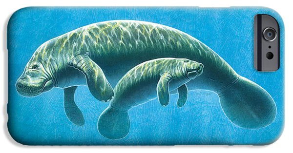 Manatee iPhone Cases - Manatee iPhone Case by JQ Licensing