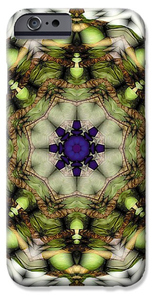 Mandala 21 iPhone Case by Terry Reynoldson