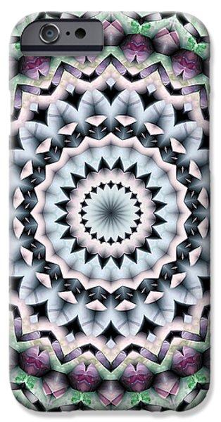 Mandala 40 iPhone Case by Terry Reynoldson