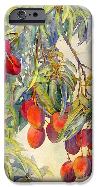 Mango Paintings iPhone Cases - Mangoes in the Evening Light iPhone Case by Dorothy Boyer