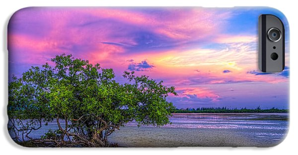 Gulf Shores iPhone Cases - Mangrove by the Bay iPhone Case by Marvin Spates