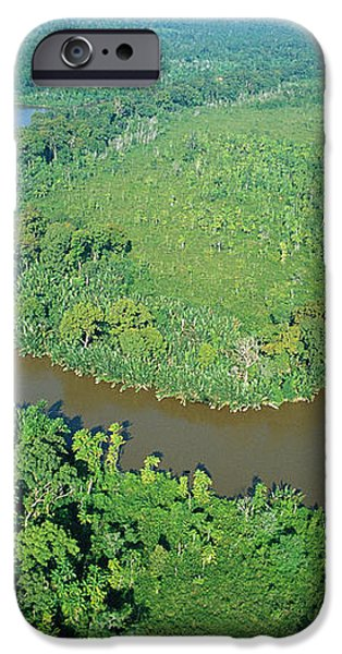 Mangrove Forest In Mahakam Delta iPhone Case by Cyril Ruoso