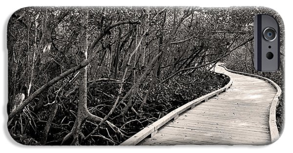Mangrove Forest iPhone Cases - Mangrove Stroll in Sepia iPhone Case by Jean Macaluso