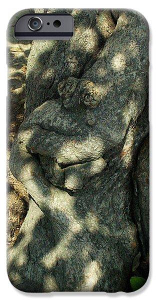 ...manHead tree... iPhone Case by Charles Struse Sr