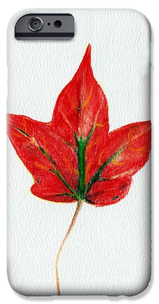Symbol iPhone Cases - Maple Leaf iPhone Case by Anastasiya Malakhova