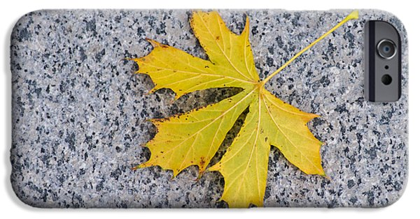 Freedom iPhone Cases - Maple Leaf On Granite 3 iPhone Case by Alexander Senin