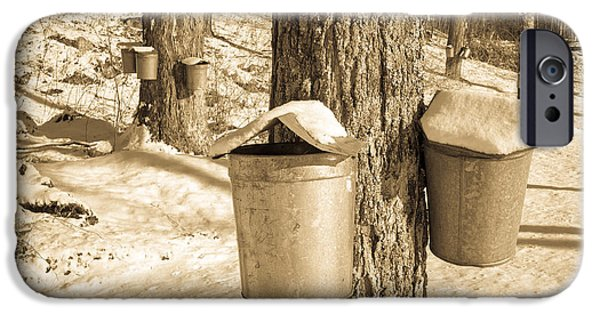 Pail iPhone Cases - Maple Sap Buckets iPhone Case by Edward Fielding
