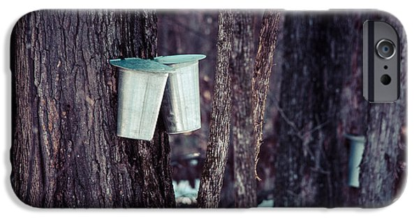 Sugaring Season iPhone Cases - Maple Sap iPhone Case by Cheryl Baxter