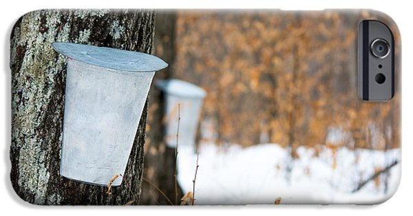 Sugaring Season iPhone Cases - Maple Syrup Time iPhone Case by Cheryl Baxter