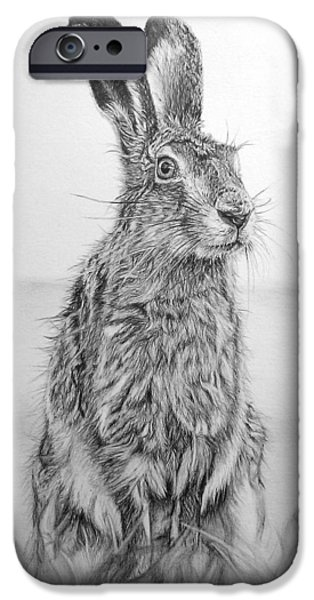 March Hare iPhone Cases - March Hare iPhone Case by Frances Vincent