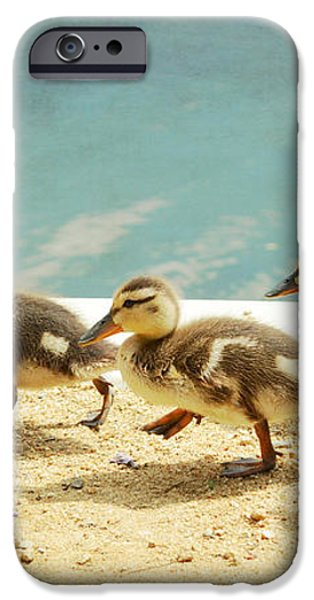March Of The Ducklings iPhone Case by Fraida Gutovich