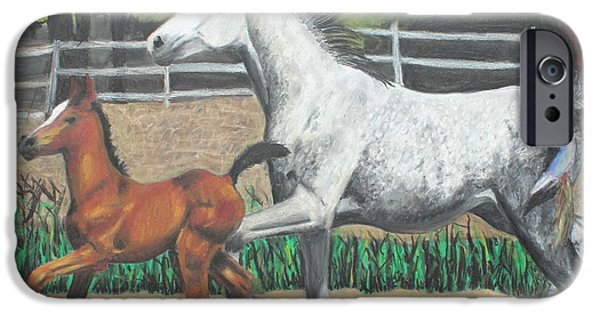 Freedom iPhone Cases - Mare and Colt iPhone Case by Jeanne Fischer