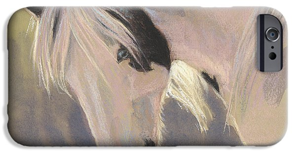 Paint Horse iPhone Cases - Mare with a Halo iPhone Case by Tracie Thompson