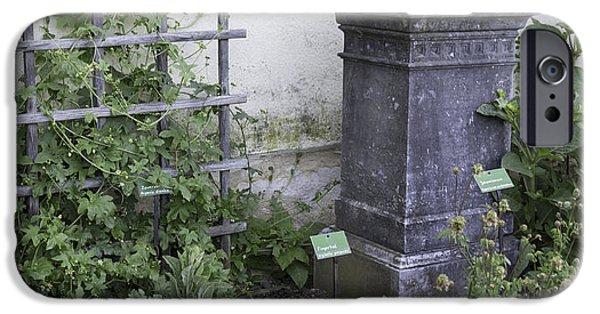 Historic Site iPhone Cases - Marksburg Castle Herb Garden 02 iPhone Case by Teresa Mucha