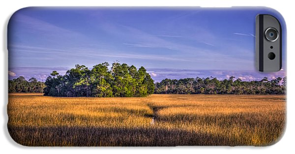 Wetlands iPhone Cases - Marsh Hammock iPhone Case by Marvin Spates