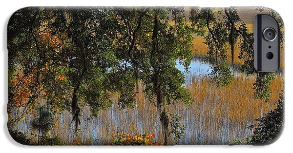 Oak Creek iPhone Cases - Marsh Side Splendor iPhone Case by Laura Ragland