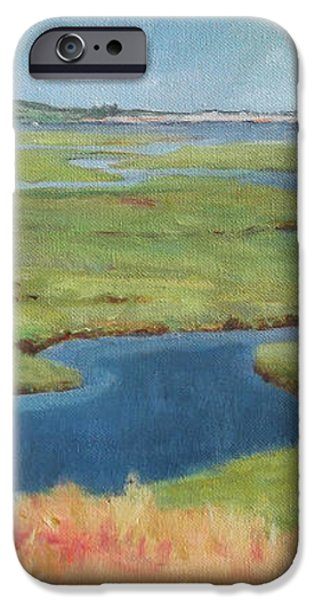 Marshes at High Tide iPhone Case by Claire Gagnon