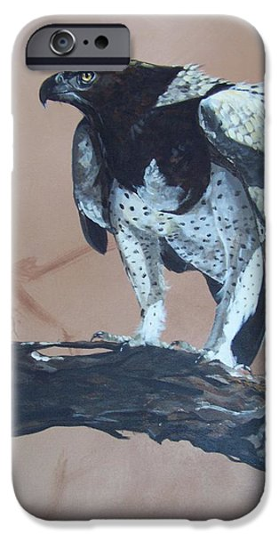 Martial Eagle iPhone Case by Robert Teeling