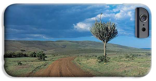 Masai Mara Photographs iPhone Cases - Masai Mara Game Reserve Kenya iPhone Case by Panoramic Images