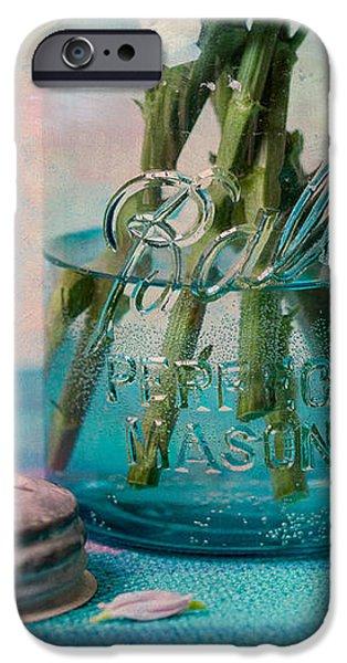 Mason Jar Vase iPhone Case by Kay Pickens