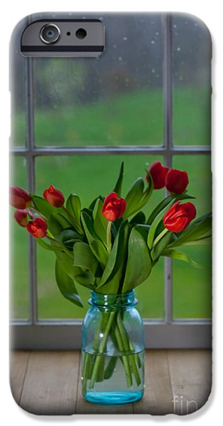Mason Jar with Tulips iPhone Case by Kay Pickens