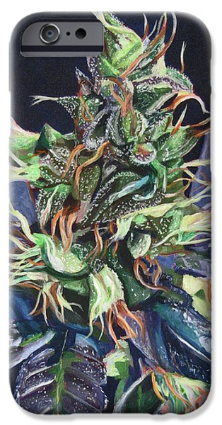 Bud iPhone Cases - Master Kush iPhone Case by Anita Toke