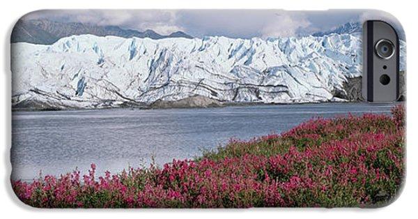 Matanuska iPhone Cases - Matanuska Glacier & River W Wild Sweet iPhone Case by Michael DeYoung